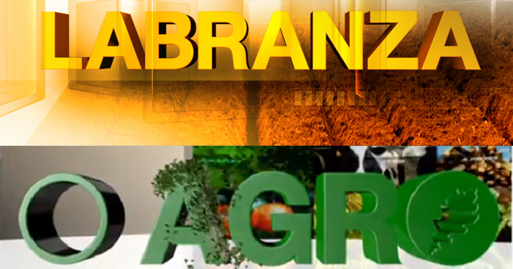rb-premiosdo2019-labranza-oagro